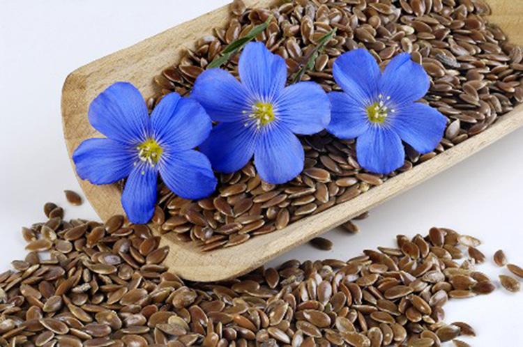 цветочки на кофе